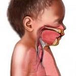 Aparato respiratorio del niño