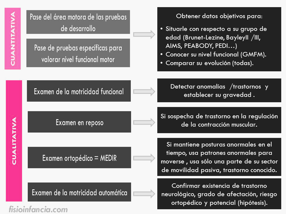 fases de la evaluación en fisioterapia pediátrica en atención temprana, fisioinfancia